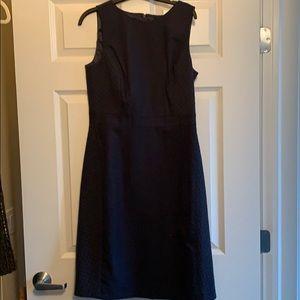 BRAND NEW J Crew navy dress